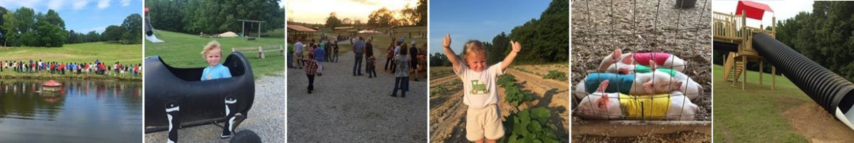 Family fun activities at Bull Bottom Farms in Duck Hill, Mississippi.