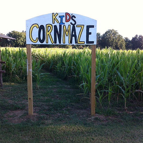 The Kids Corn Maze and Big Corn Maze at Bull Bottom Farms in Duck Hill, Mississippi.